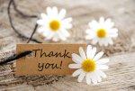 The Anatomy of Gratitude
