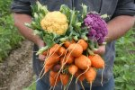 Prison Gardens: Food for Body and Soul