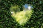 A Spotlight on Love