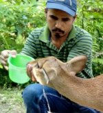 The Animal Rescuer of Assam